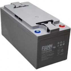 FIAMM 12FGL210